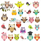 set-of-owls